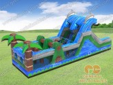 Dolphin obstacle course