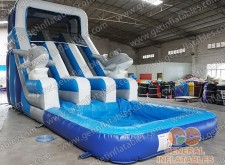 Dolphin dual water slide